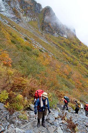 北岳バットレスの岩壁と紅葉を間近に見ながら進む登山者