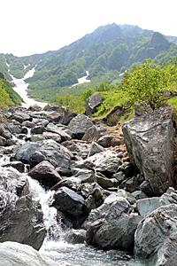 大樺沢沿いの登山道には雪解け水が流れ、疲れた体を癒やしてくれる=南アルプス・北岳