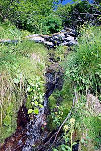 80年以上前から小屋の水場となっている北沢の源流=南アルプス・北岳周辺