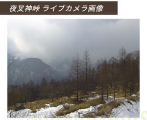ホームページでは夜叉神峠に設けたライブカメラの画像も掲載。最新の天候を確認することができる
