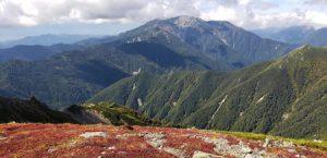 中白根峰までの稜線より仙丈ヶ岳 (9月26日撮影)
