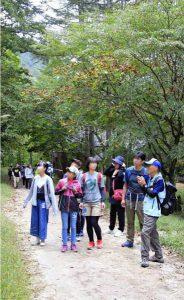 甲武信ケ岳の西沢渓谷をガイドと歩くイベントが開かれた。山梨市三富川浦の「道の駅みとみ」を発着点に、西沢山荘やつり橋、三重の滝を散策した
