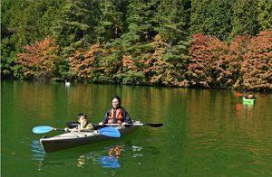秋の伊奈ケ湖、カヌー楽しむ