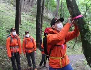 登山道の危険箇所にピンク色のテープを巻く山岳遭難救助隊員=南アルプス市芦安芦倉